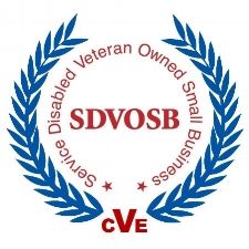 CVE SDVOSB Logo - BW.jpg