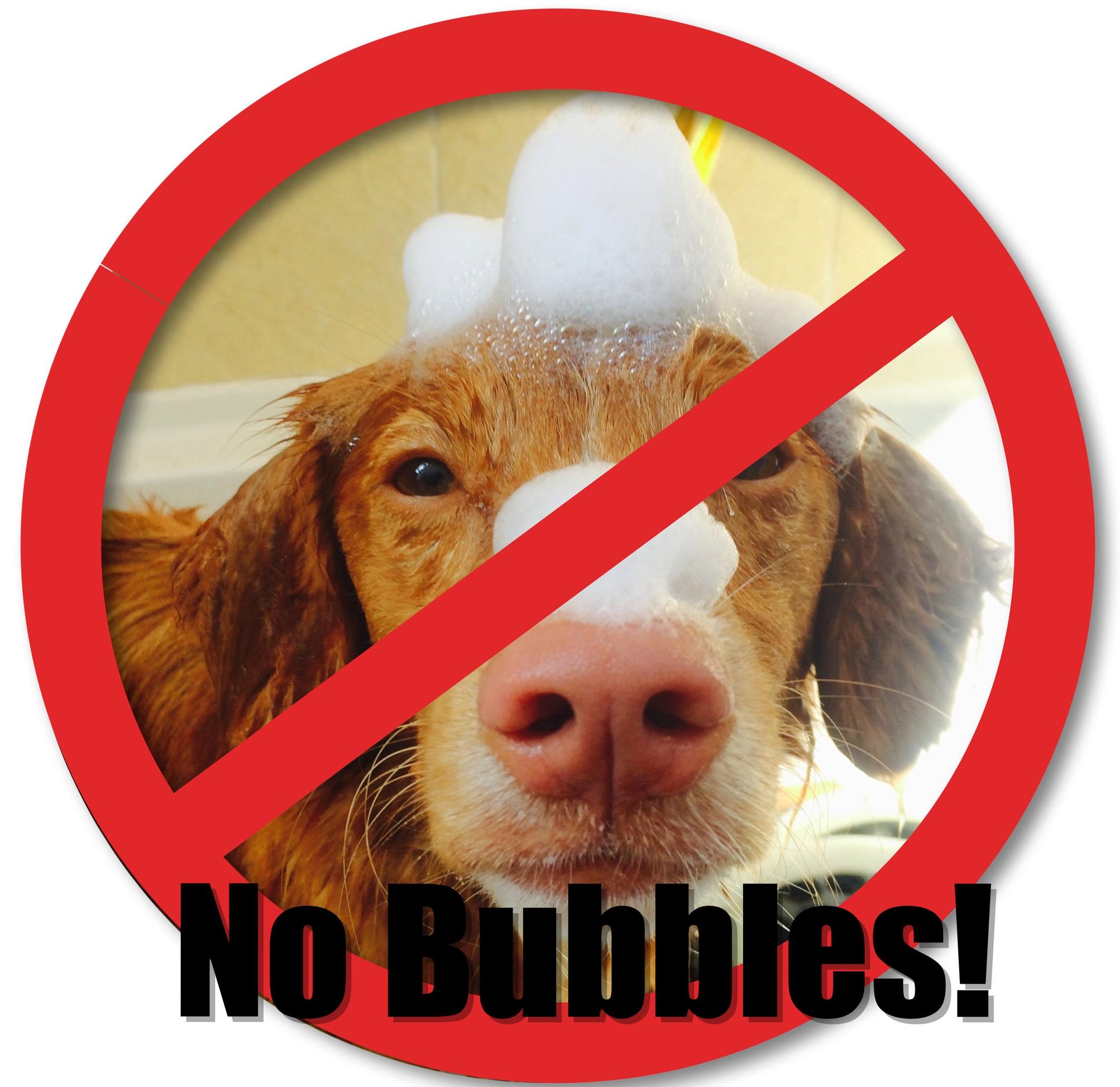 No Bubbles!.jpg