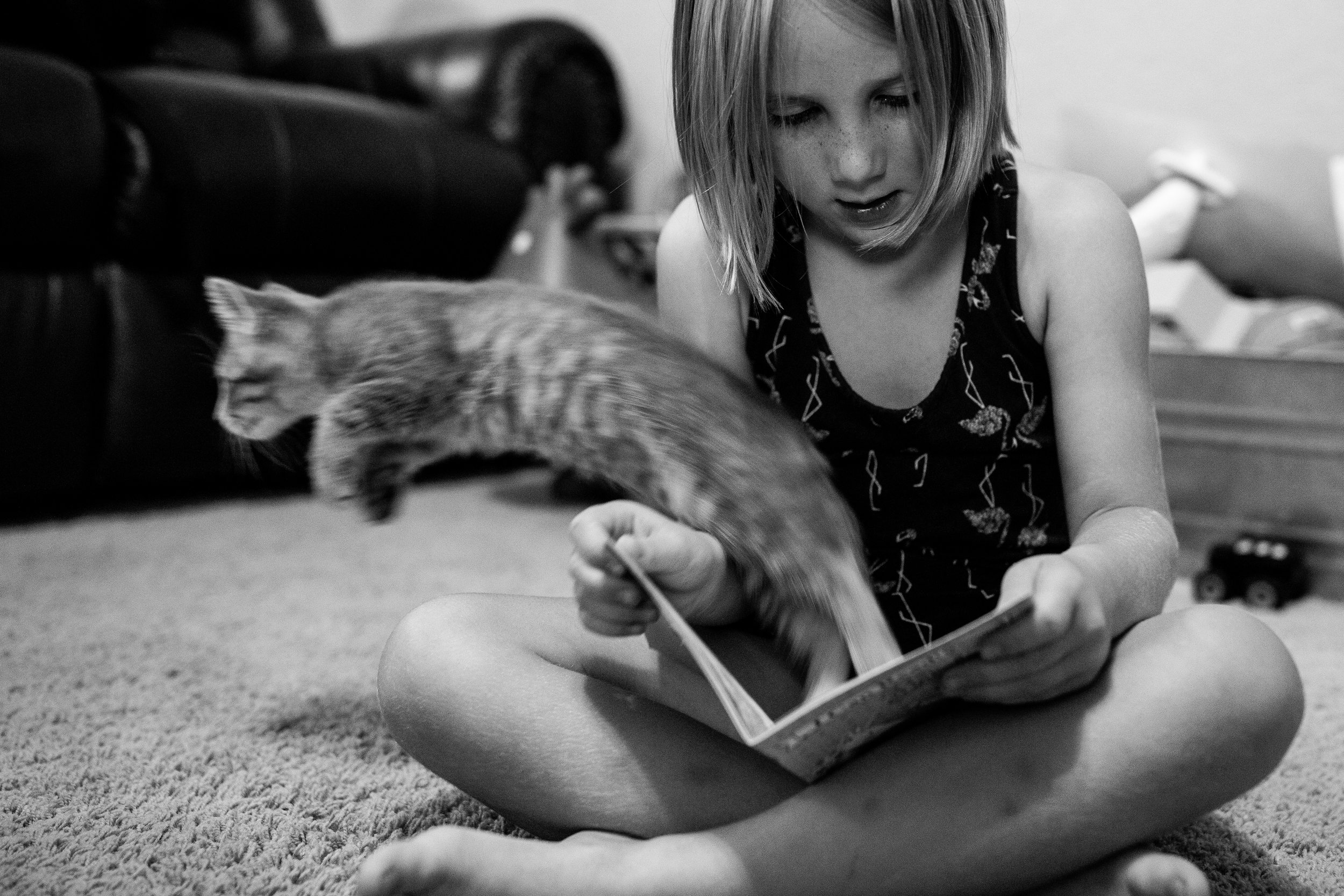 reading with a kitten.jpg