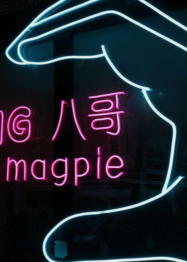 Magpie - SHENZHEN, CHINA