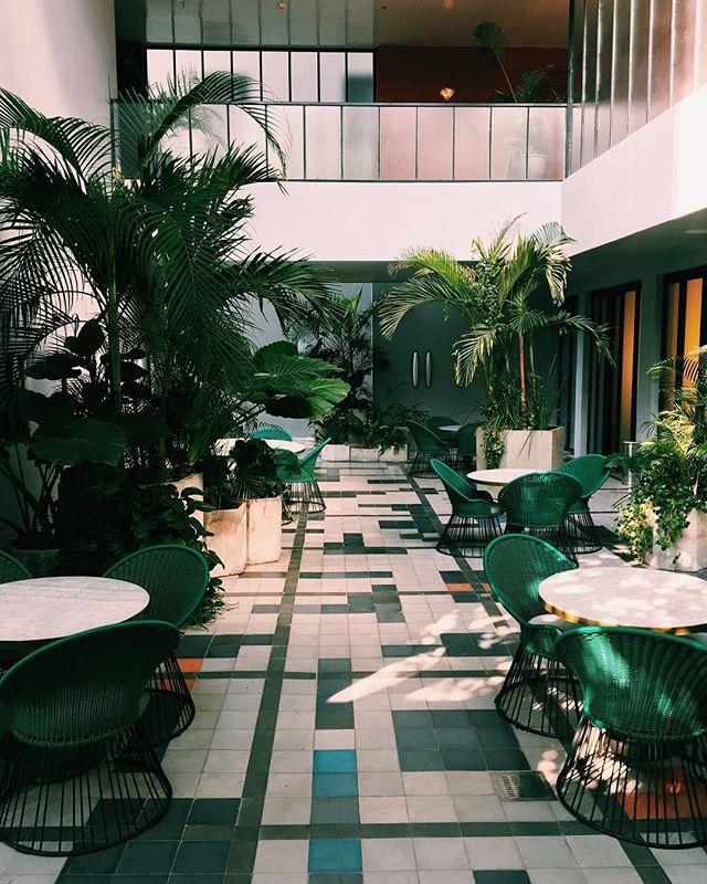 Mastering the art of inside / outside fusion in design vastly enhances the perception of space - - - - - - - - - - - - - - - - - - - - - #hospitalityconsulting #interiordesign #artehosconcepts #hospitalitydesign #hospitalityinteriors #creativeagency #hoteldesign #digitalmarketingagency #creatives #hongkongdesign #greenhouse #interiordesign #interiordecor #interiordetails #plantsofinstagram #interiorinspiration #indoorplants #plantlife #greendecor #plantdecor #houseplants