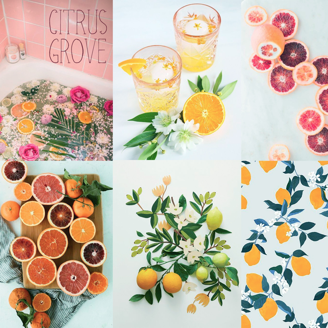 Citrus Grove Mood Board