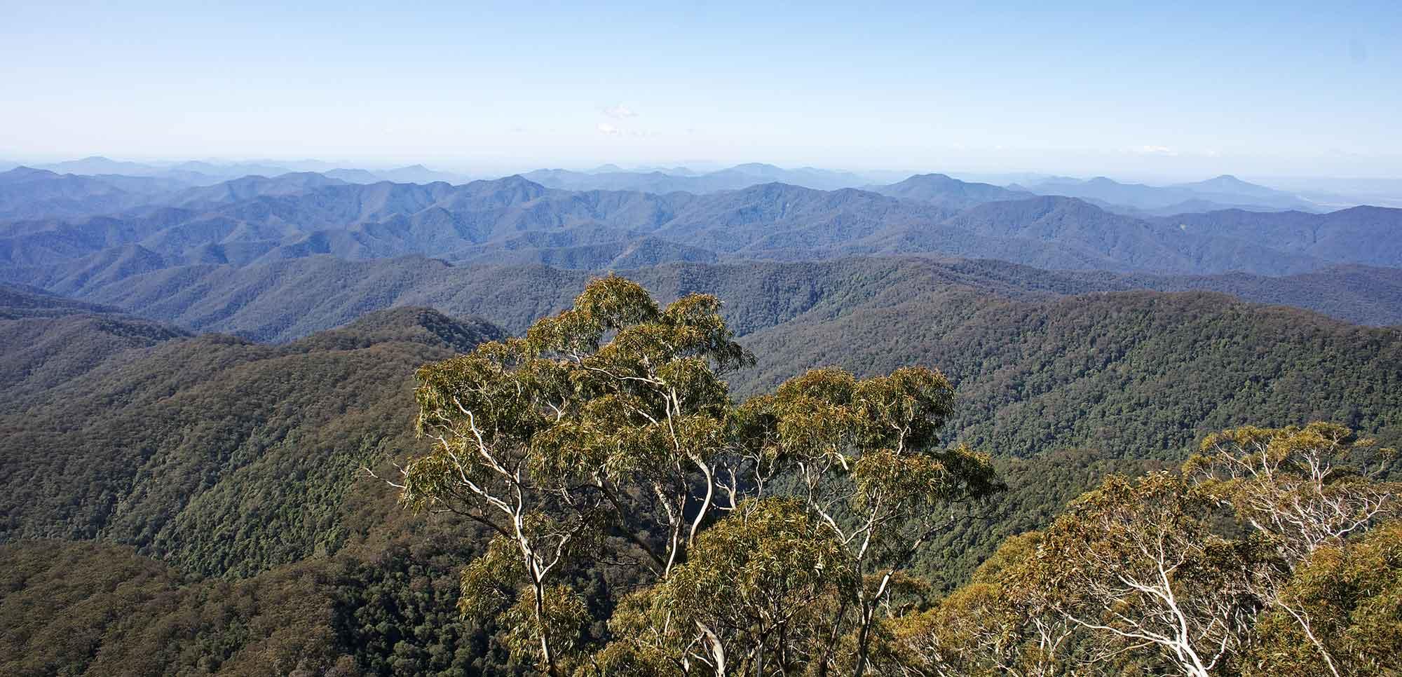 Point Lookout — mountain vistas.