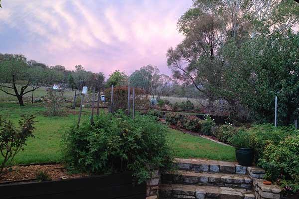 Copy of Copy of Yarralong B&B and Farmstay — beautiful gardens