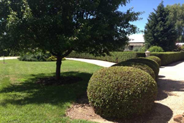 Glen Waverly homestead and gardens