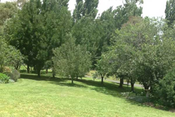 Glen Waverly Farm Stay