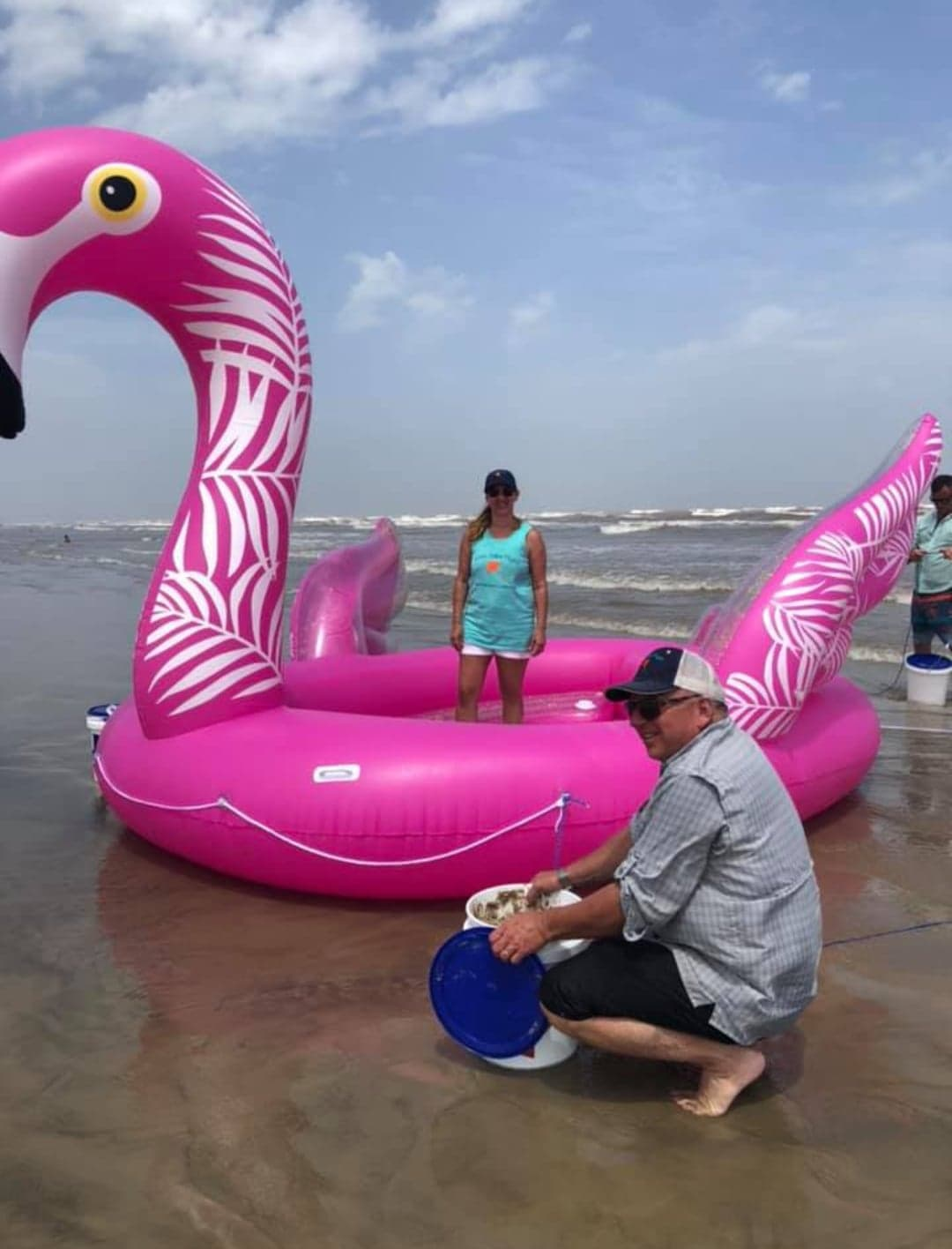 FlamingoBlownUp.jpg