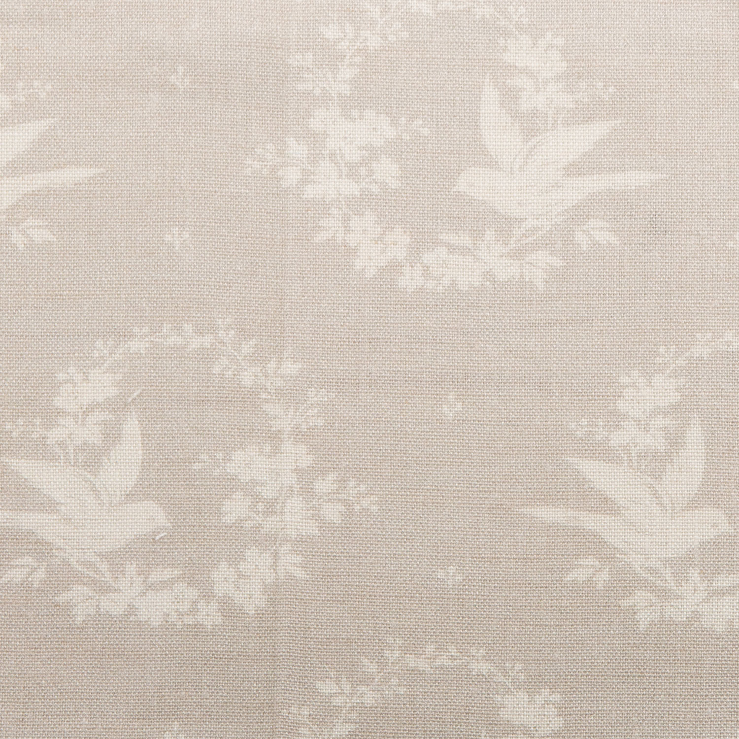 Small Birdsong, Gustavian Grey on Ivory