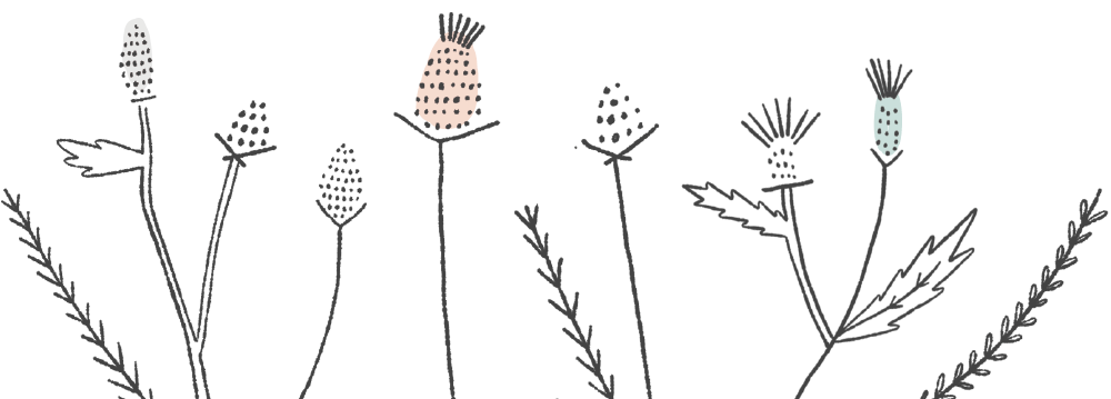 TaitThistle-Footer.png