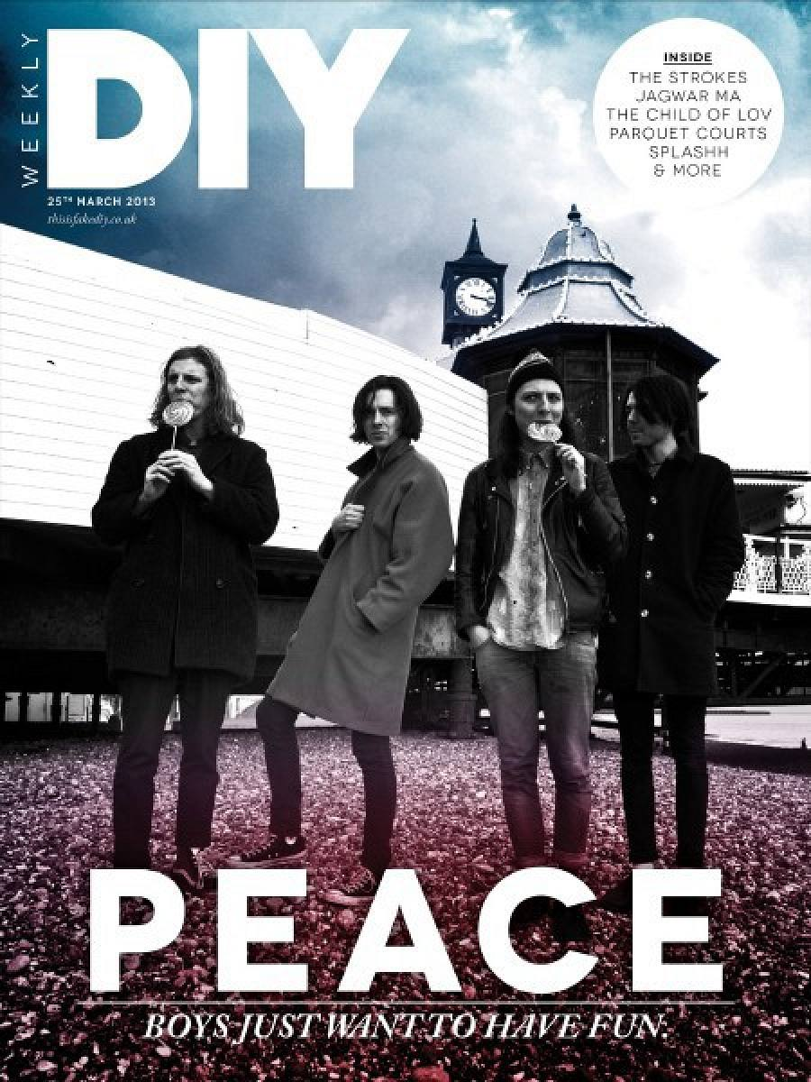 DIY Weekly, 25th March 2013