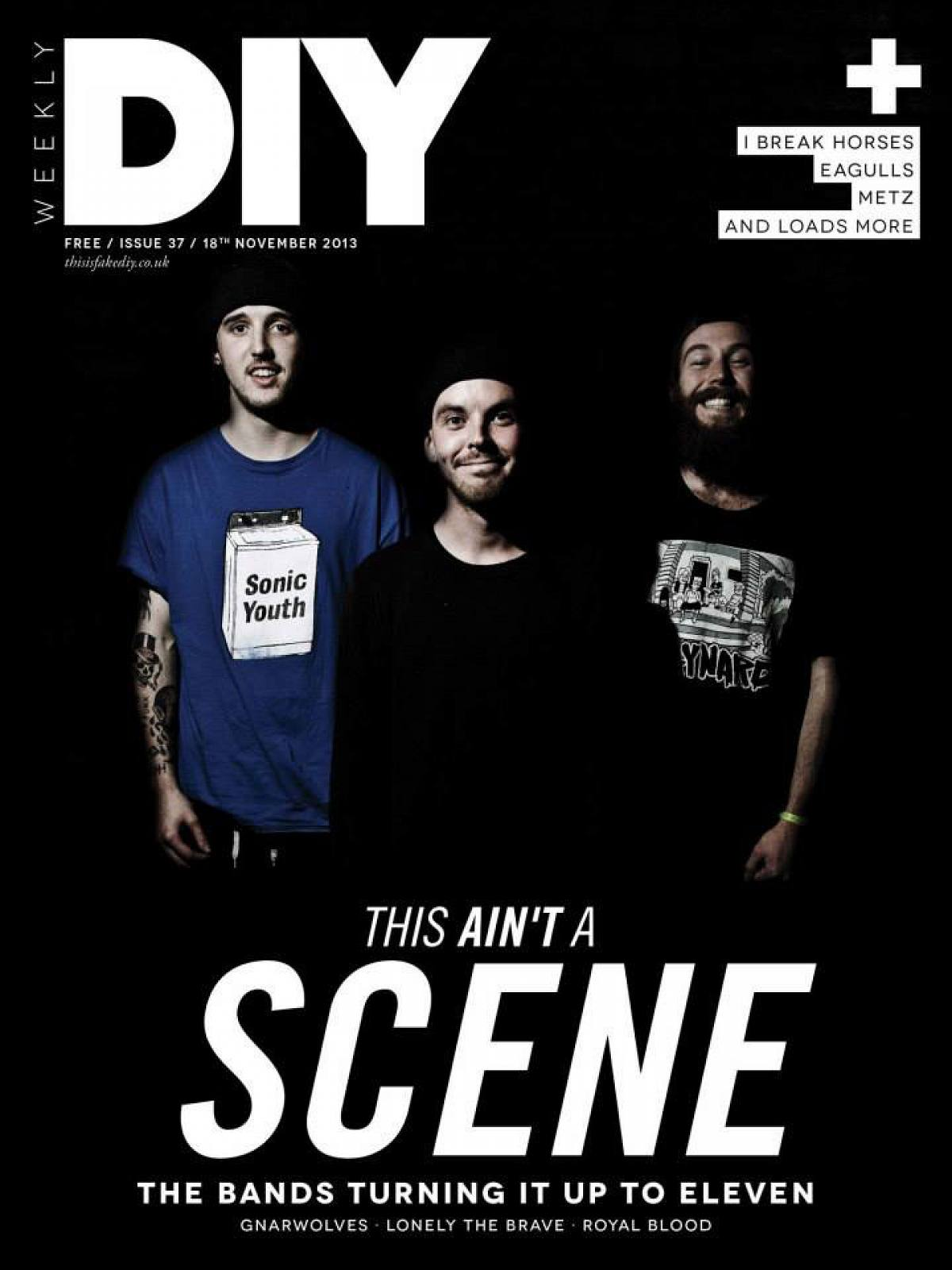 DIY Weekly, 18th November 2013