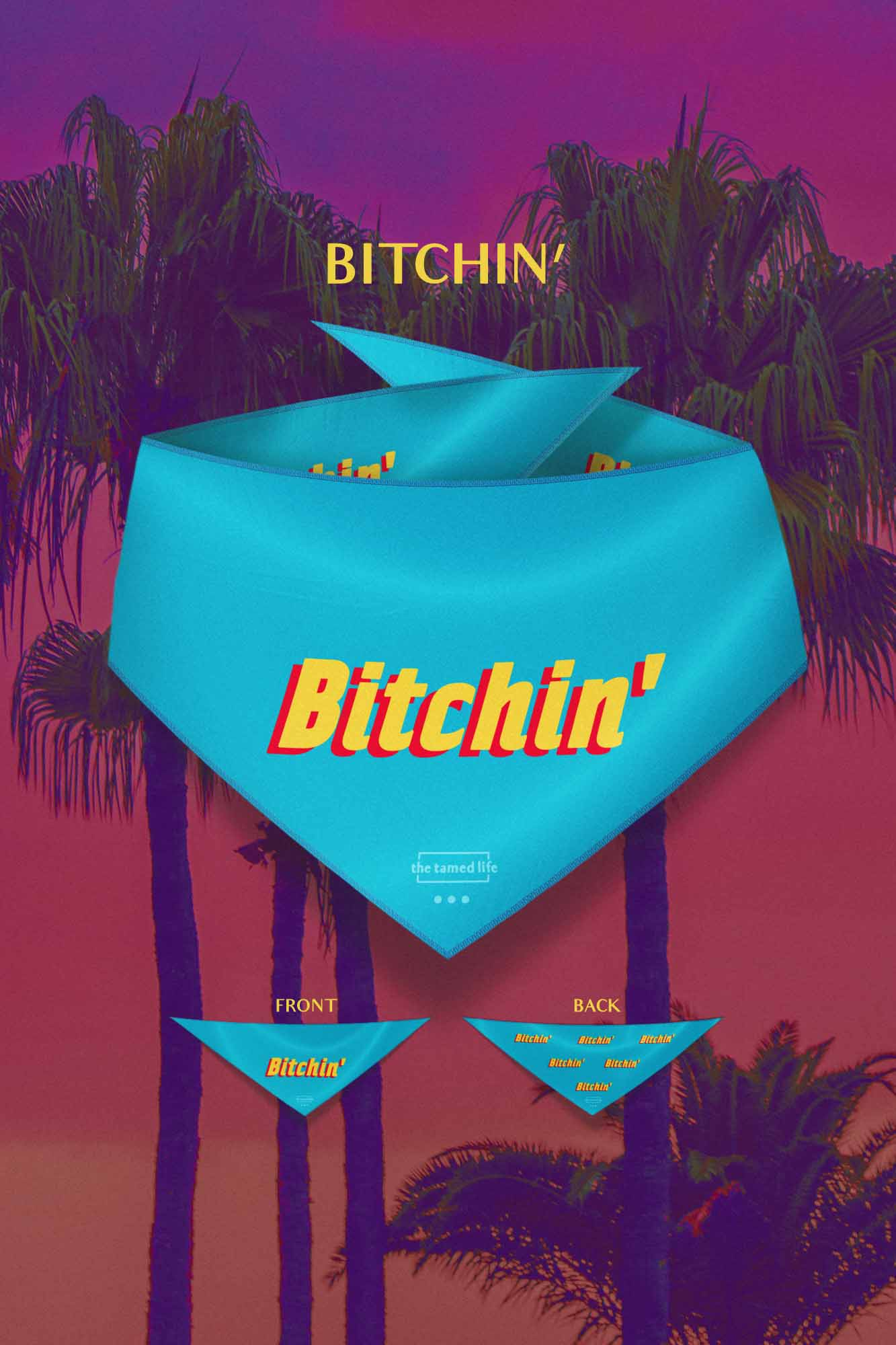 ttl_0001bitchin_visual.jpg