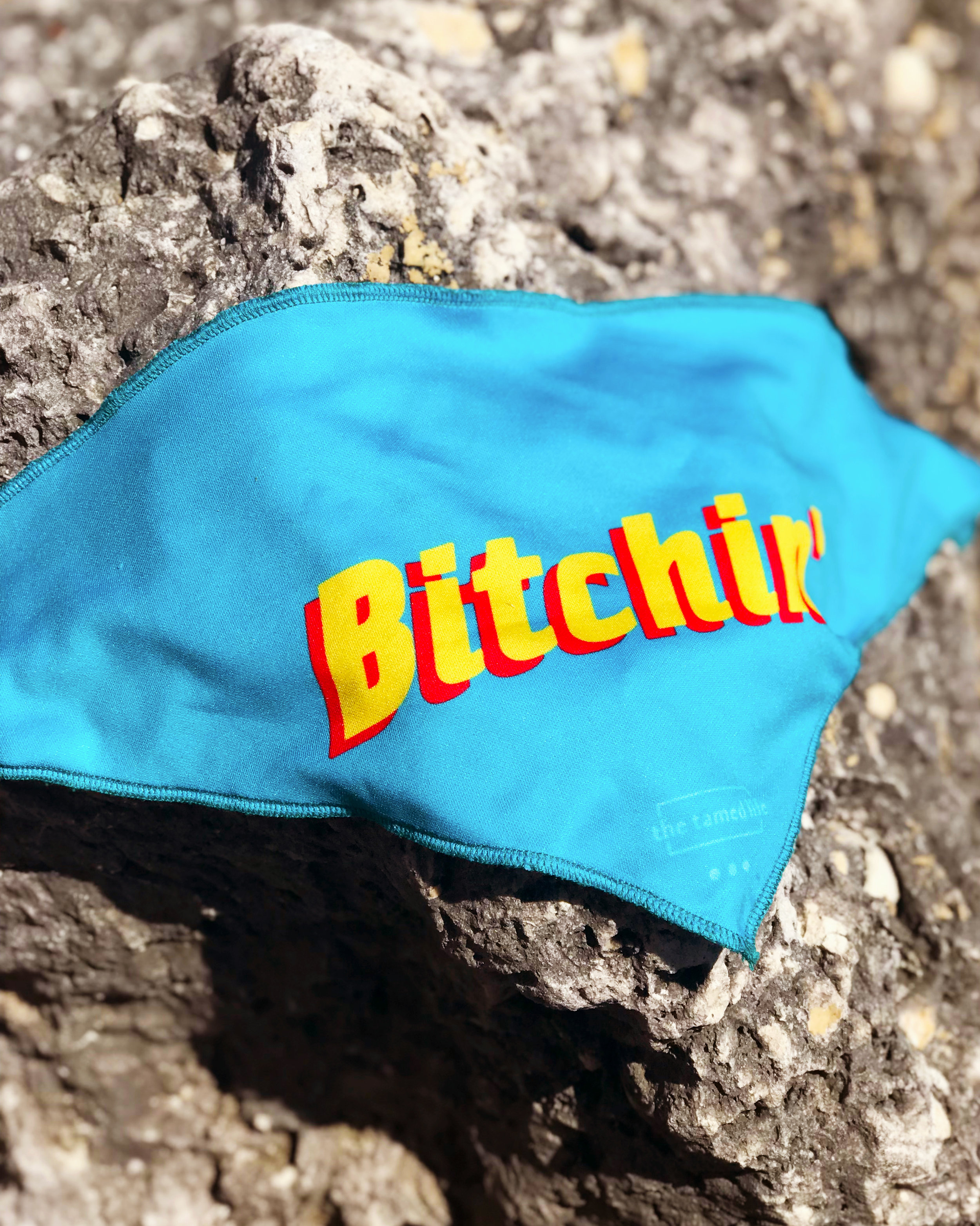 bitchin_rocks_1.jpg