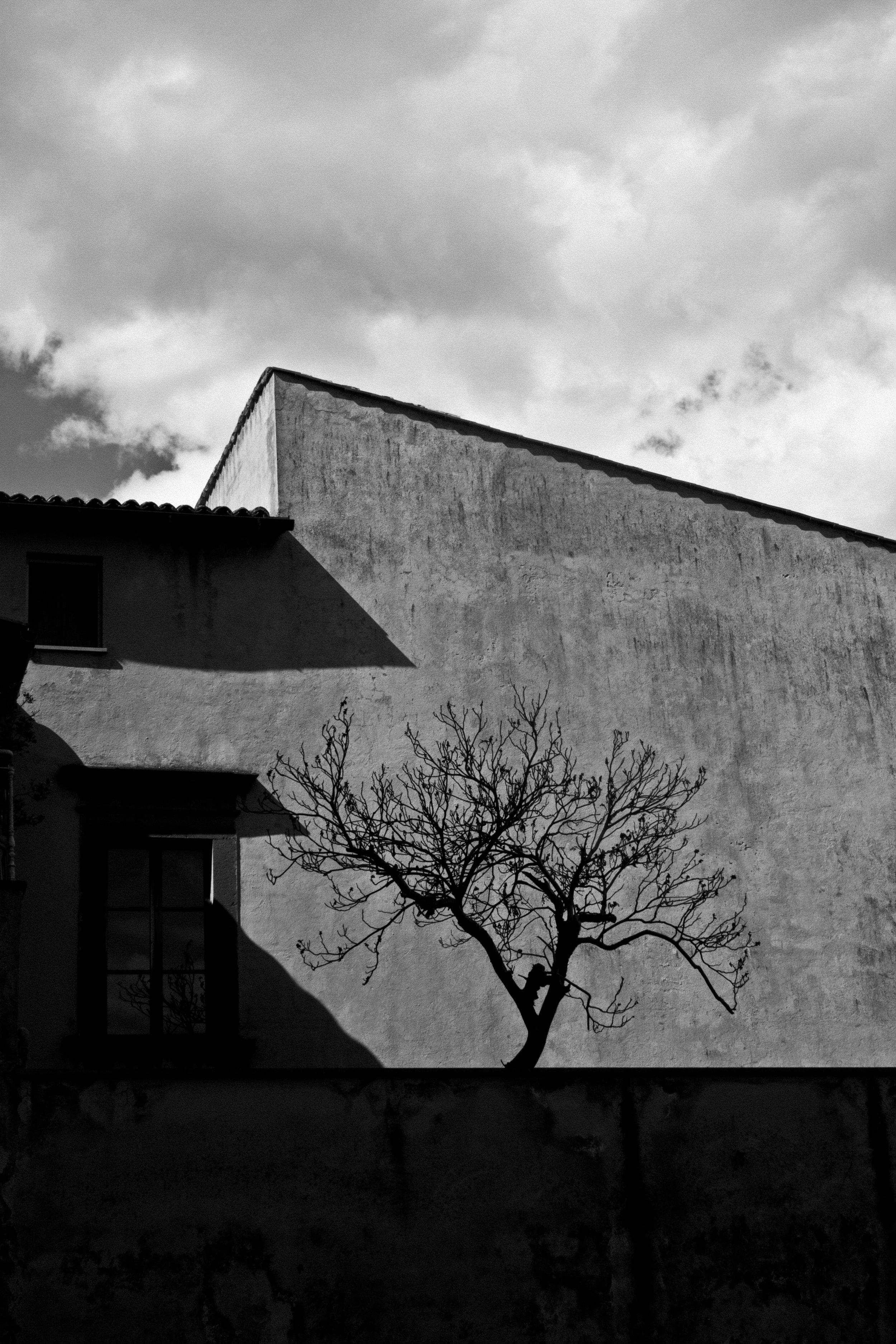 Orvieto_2010_3