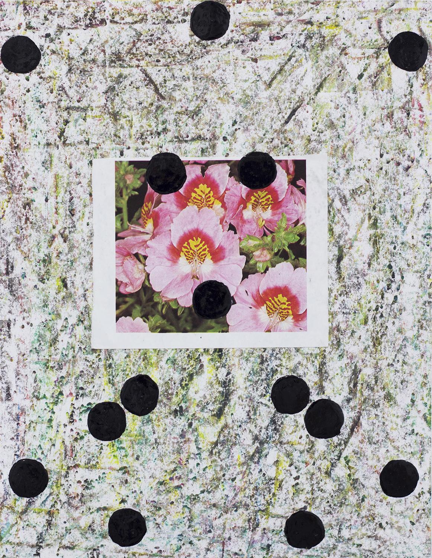 FlowerStudy2 copy.jpg