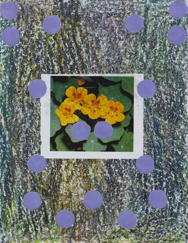 FlowerStudy3 copy.jpg