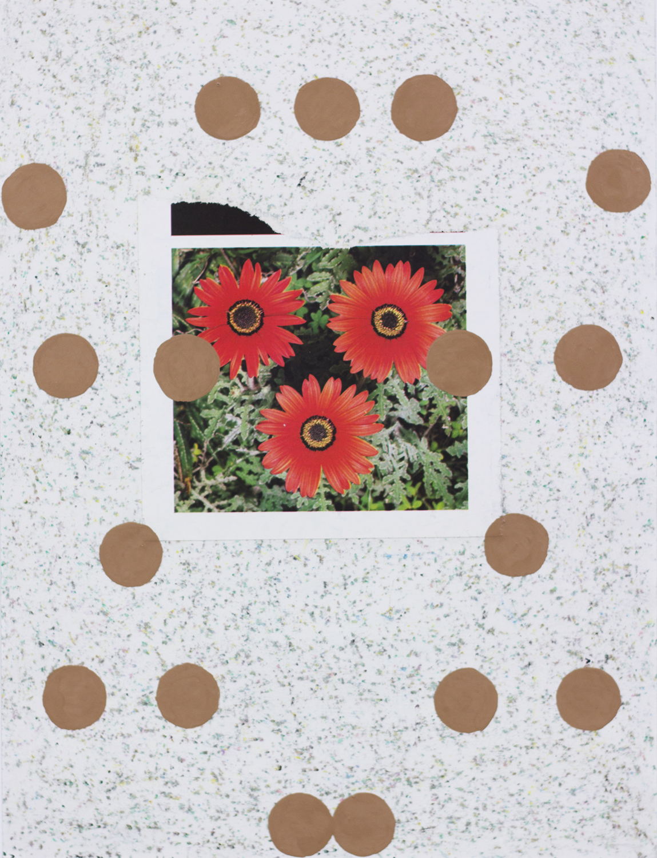 FlowerStudy10 copy.jpg