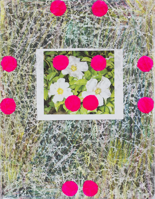 FlowerStudy13 copy.jpg