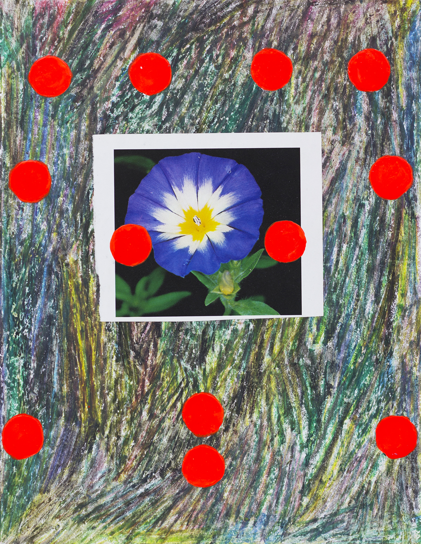 FlowerStudy14 copy.jpg
