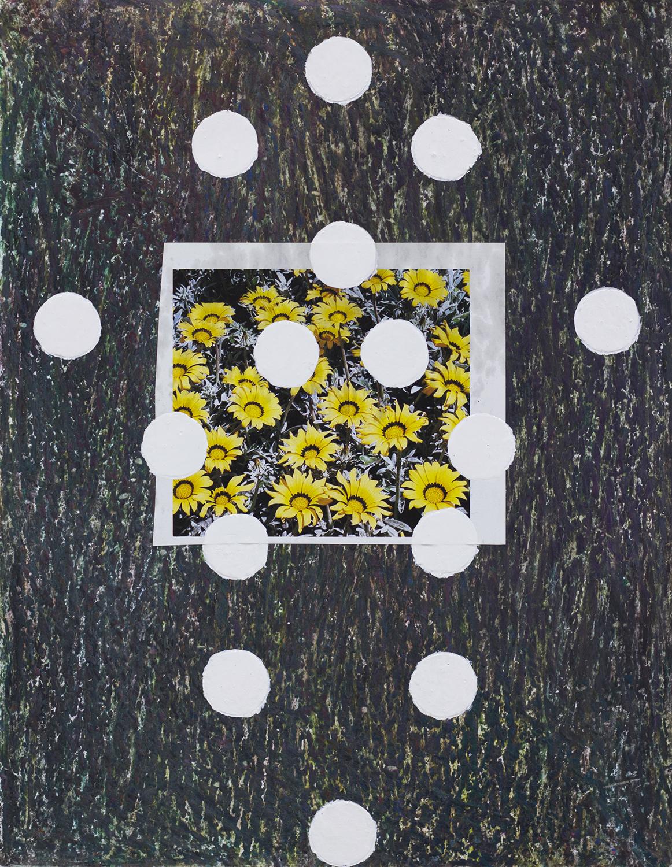 FlowerStudy15 copy.jpg
