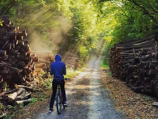🚀We spent the whole week away from the teeming city life so we could fully focus on our startup with the absolute best help from the awesome members of @design_terminal 🚴We had a chance to rent bikes and explore the enchanting valleys of the Börzsöny mountains.  #dtmentoring #cycling #mountainbike #forest #magic #hungary #adventuretime #photoshoot #mountainbiking