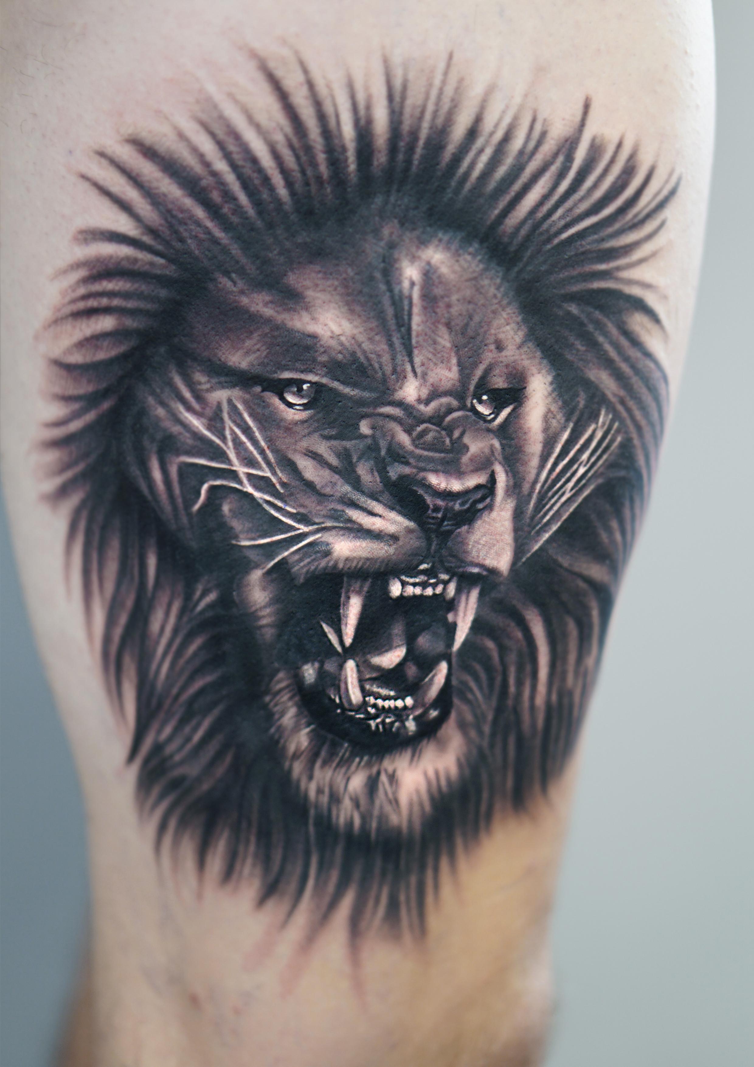 blackhopetattoo colchestertattoo essextattoo realistictattoo blackandgreytattoo Liontattoo thightattoo tattoosformen lion
