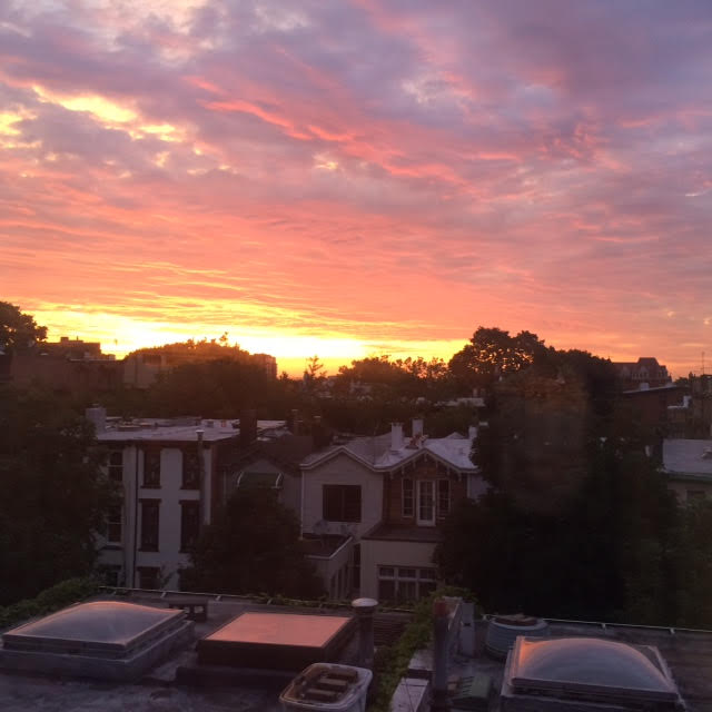 Sunrise Roof Brooklyn.jpg