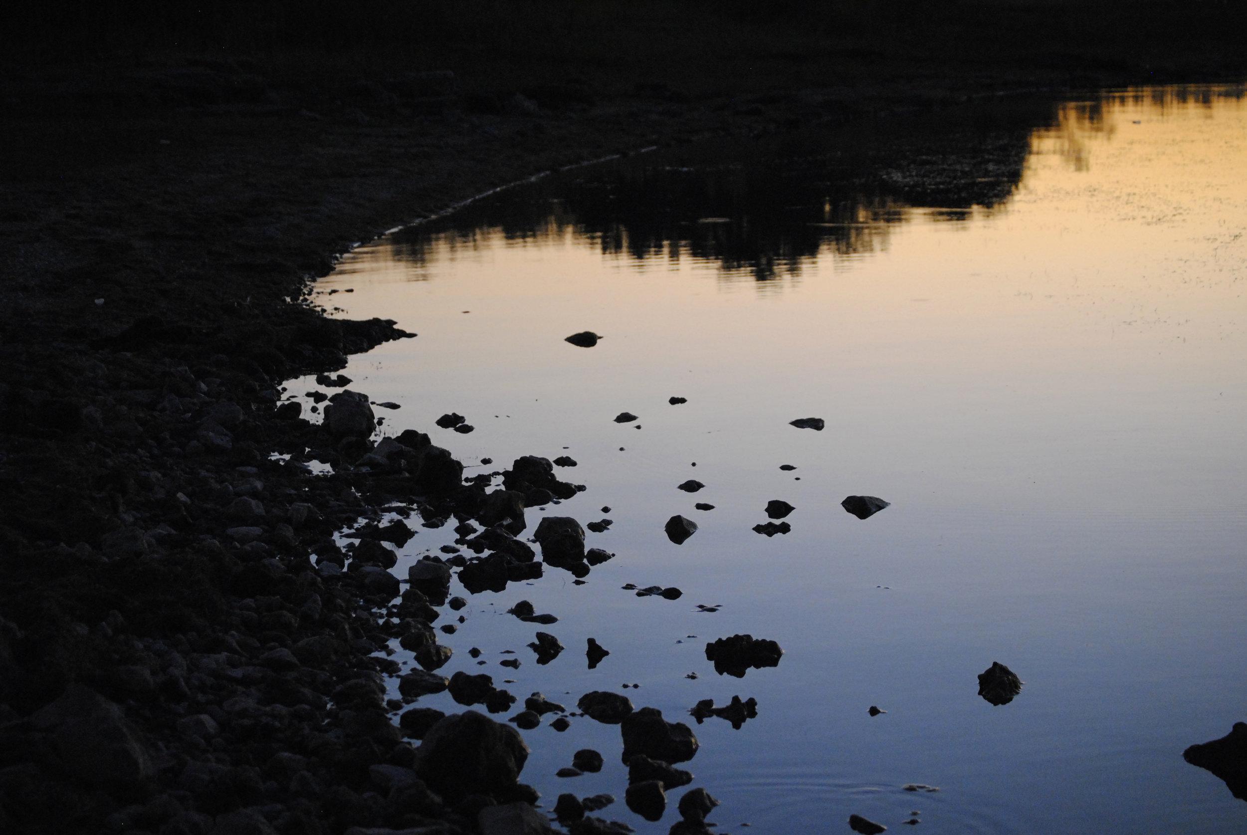 Dusk on the Pond.jpg