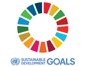 UN+SDG+SUMMIT+-+HLPF.png