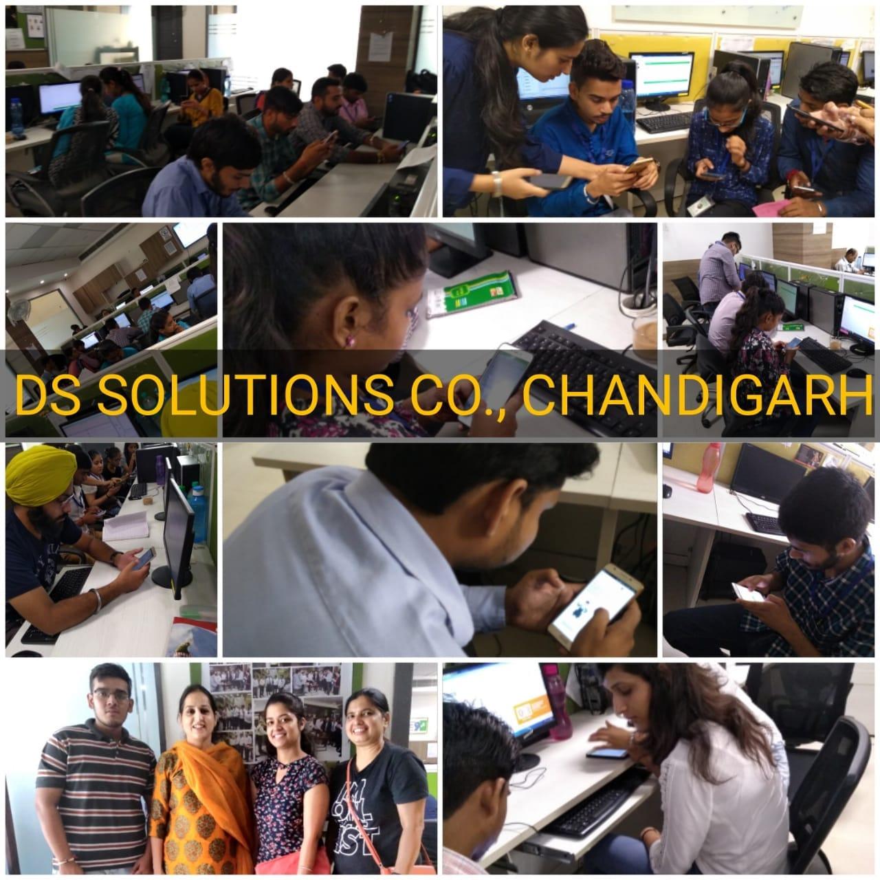 DS Solutions Chandigarh.jpeg