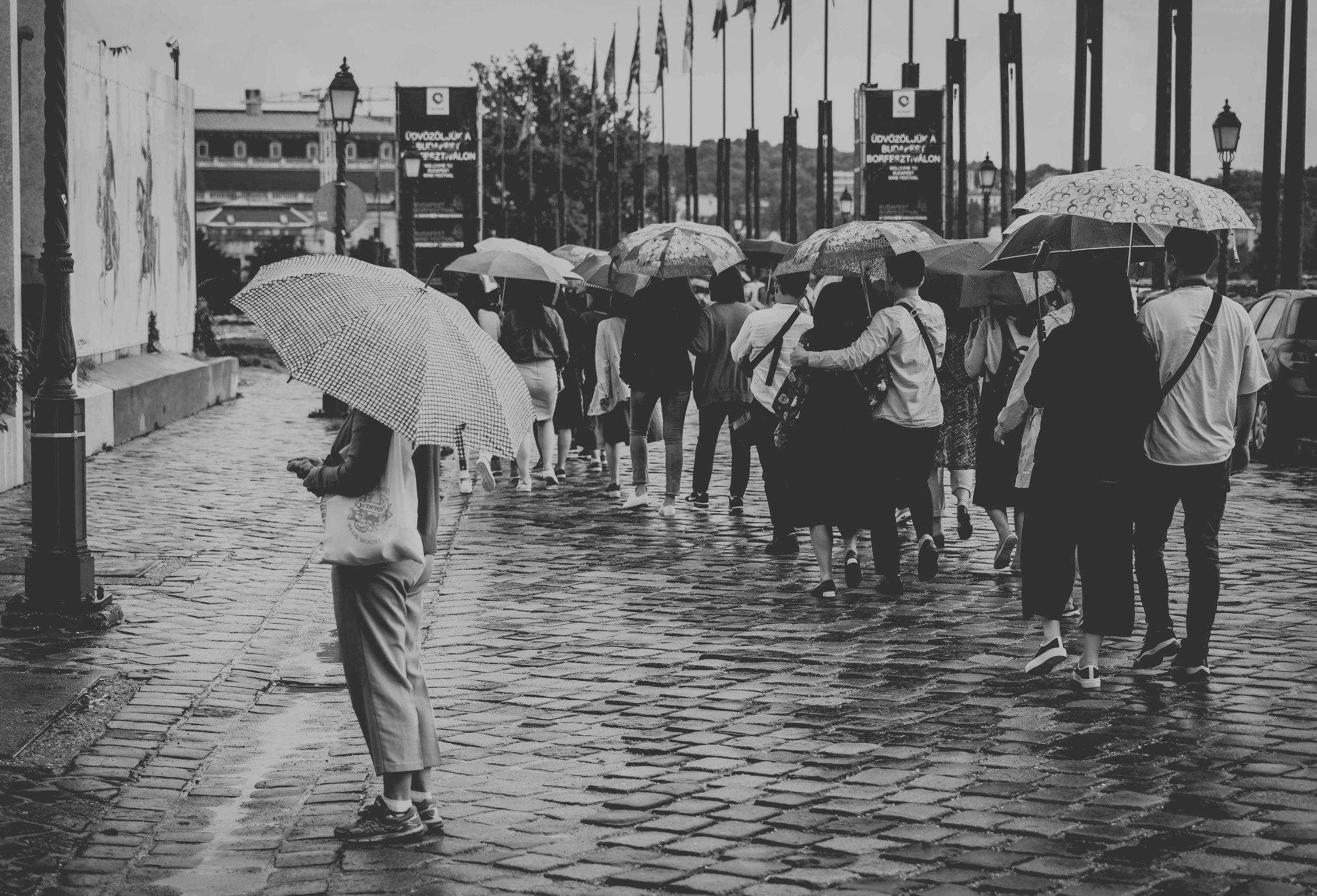 Umbrellas1small.jpg