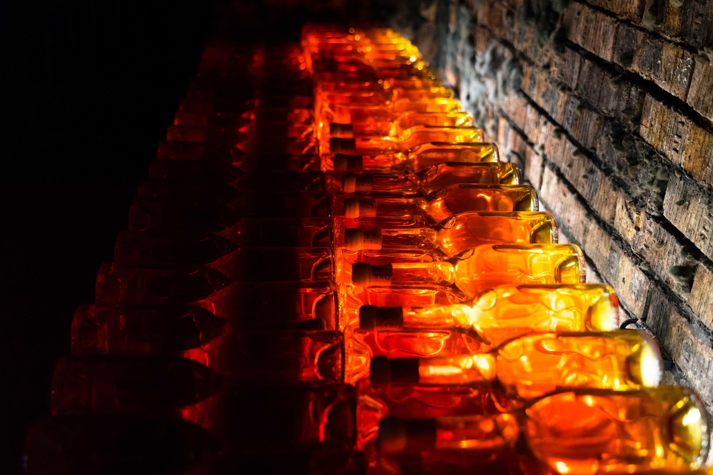 Bottlelights1small.jpg