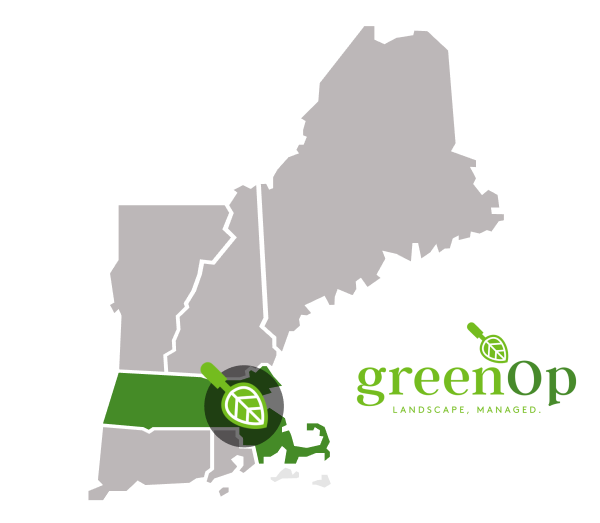 noun_New England Map_190702_000000 (1).png