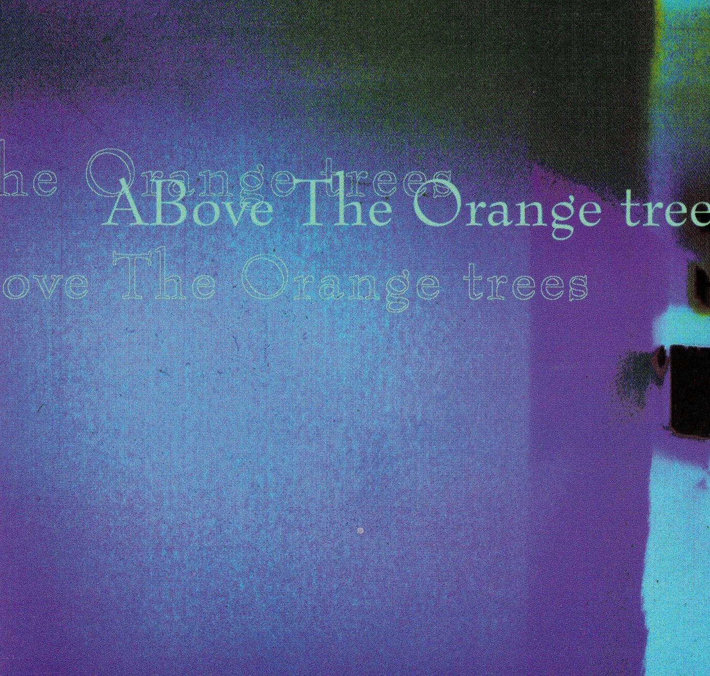 Above the Orange Trees
