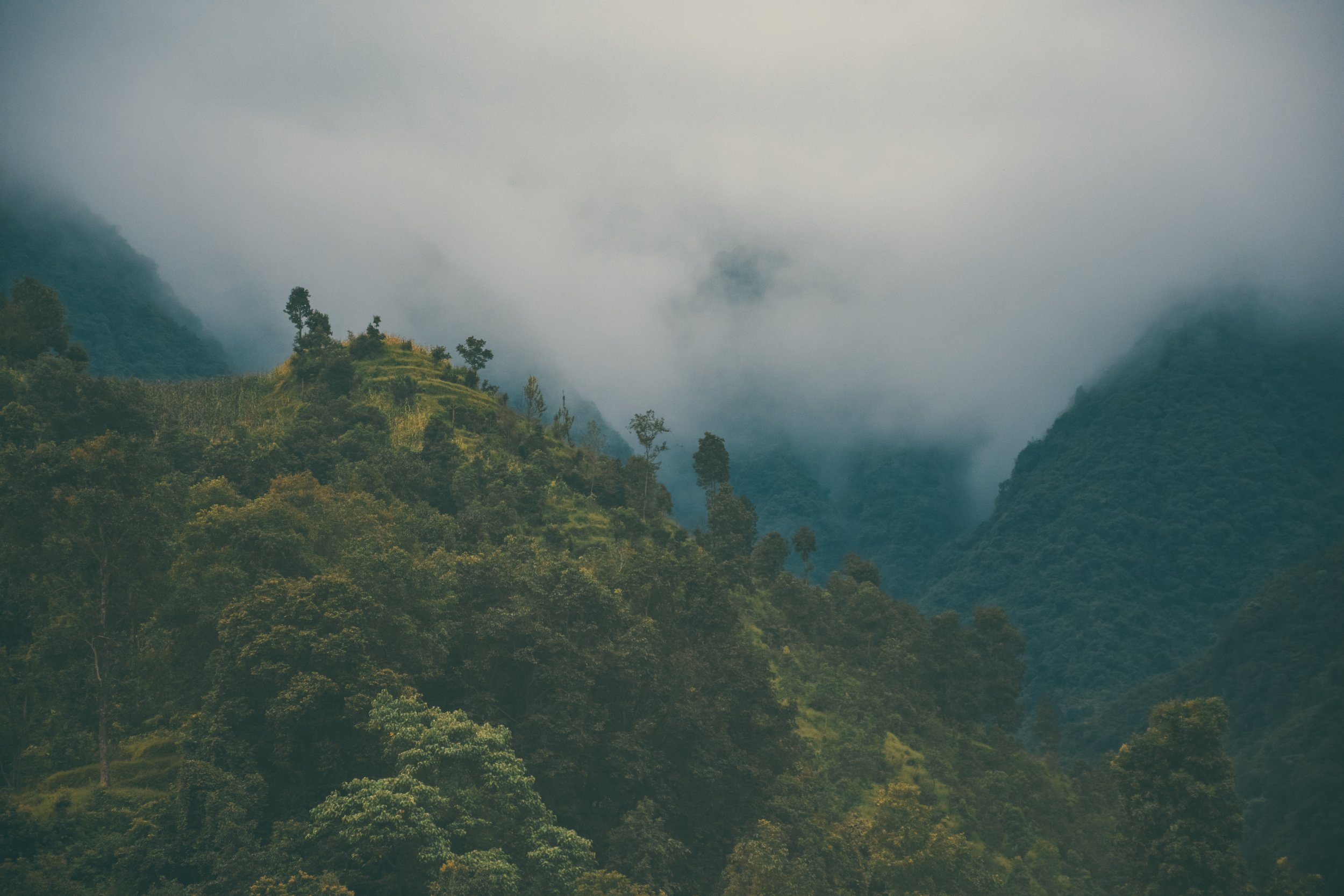 The mist and rain during monsoon can make it uncomfortable to trek, and hide any mountains views you might be looking for!