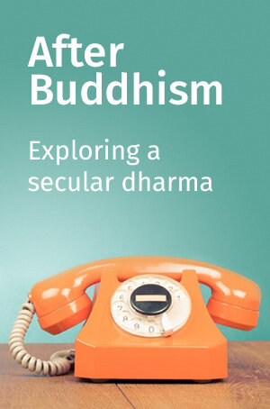 front_cover-AFTER-BUDDHISM.jpg