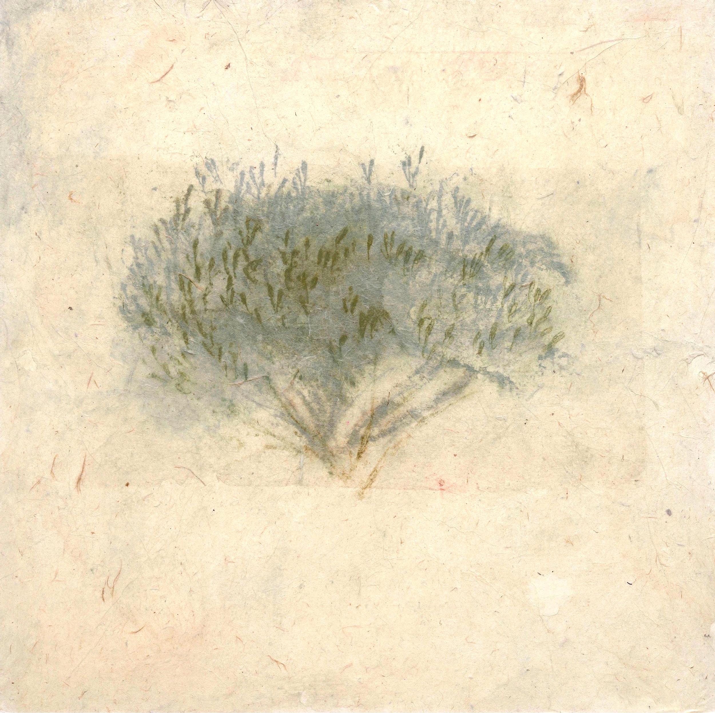 019_Olive Tree (panel) 3.jpg