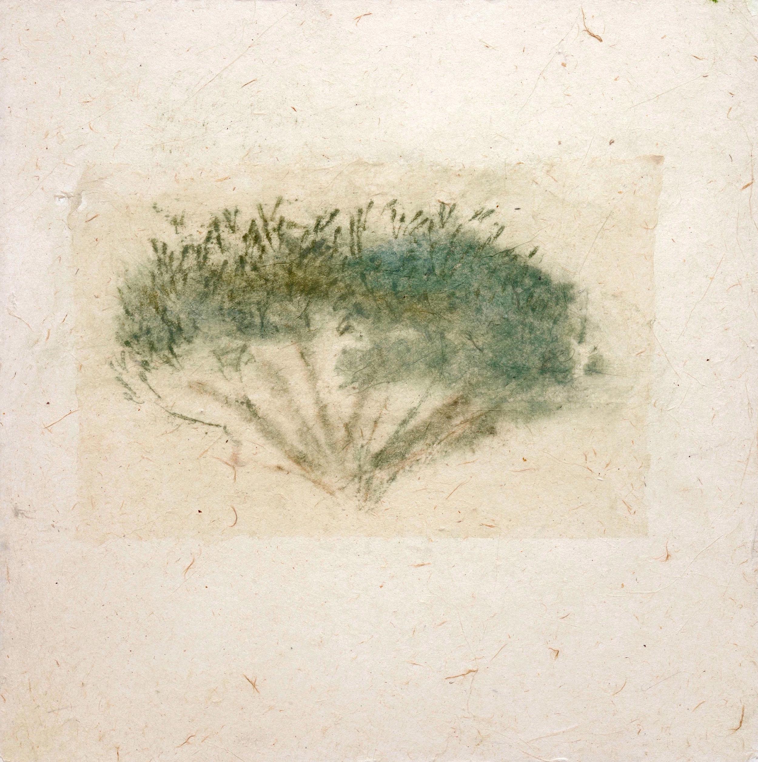 020_Olive Tree (panel) 4.jpg