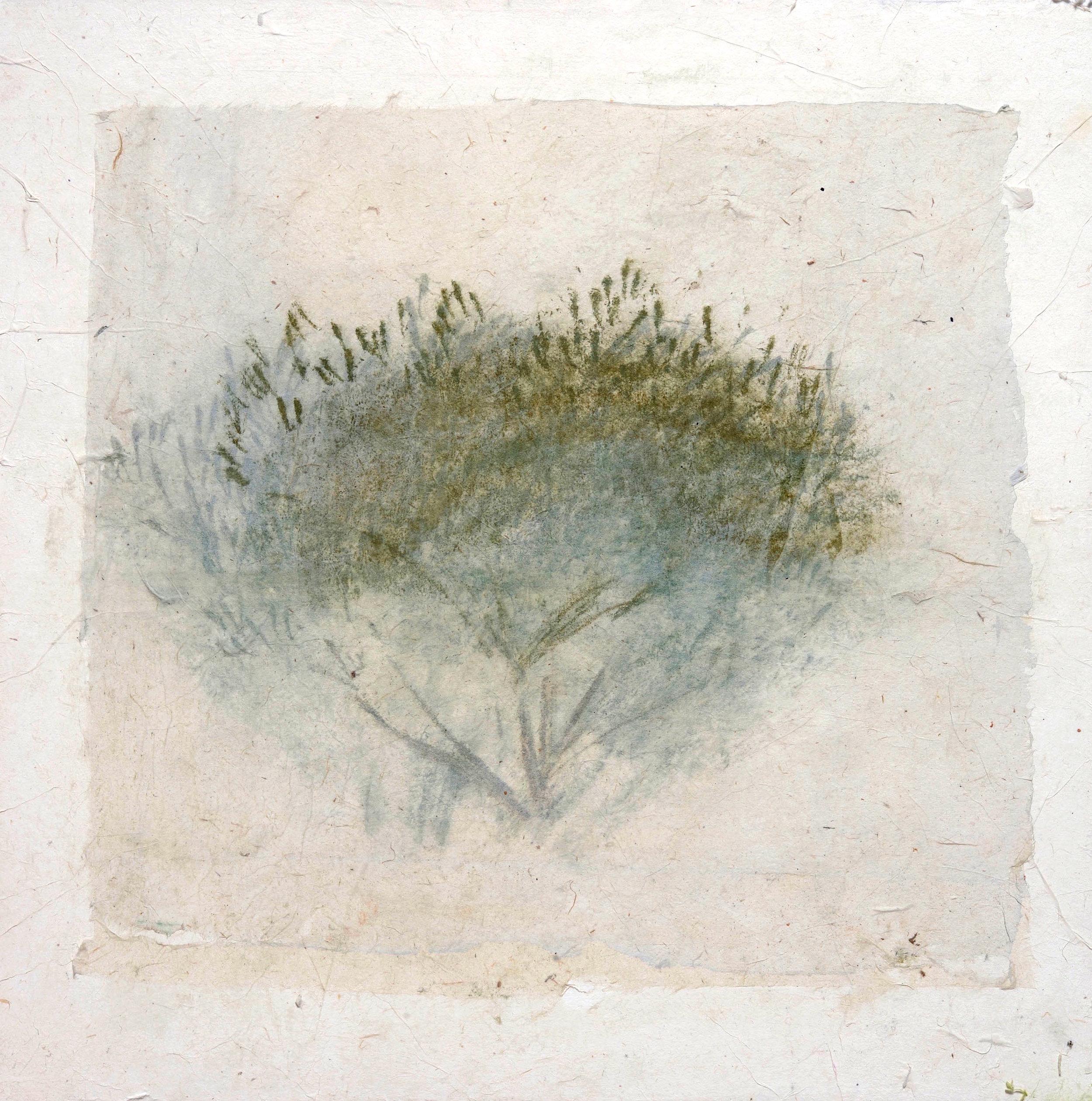 022_Olive Tree (panel) 6 2.jpg