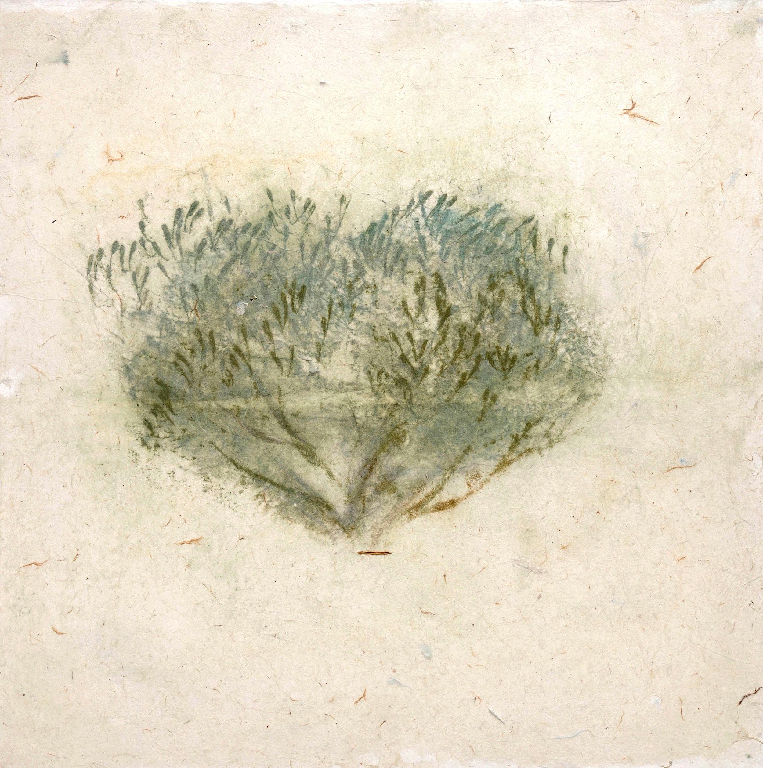 025_Olive Tree (panel) 9.jpg