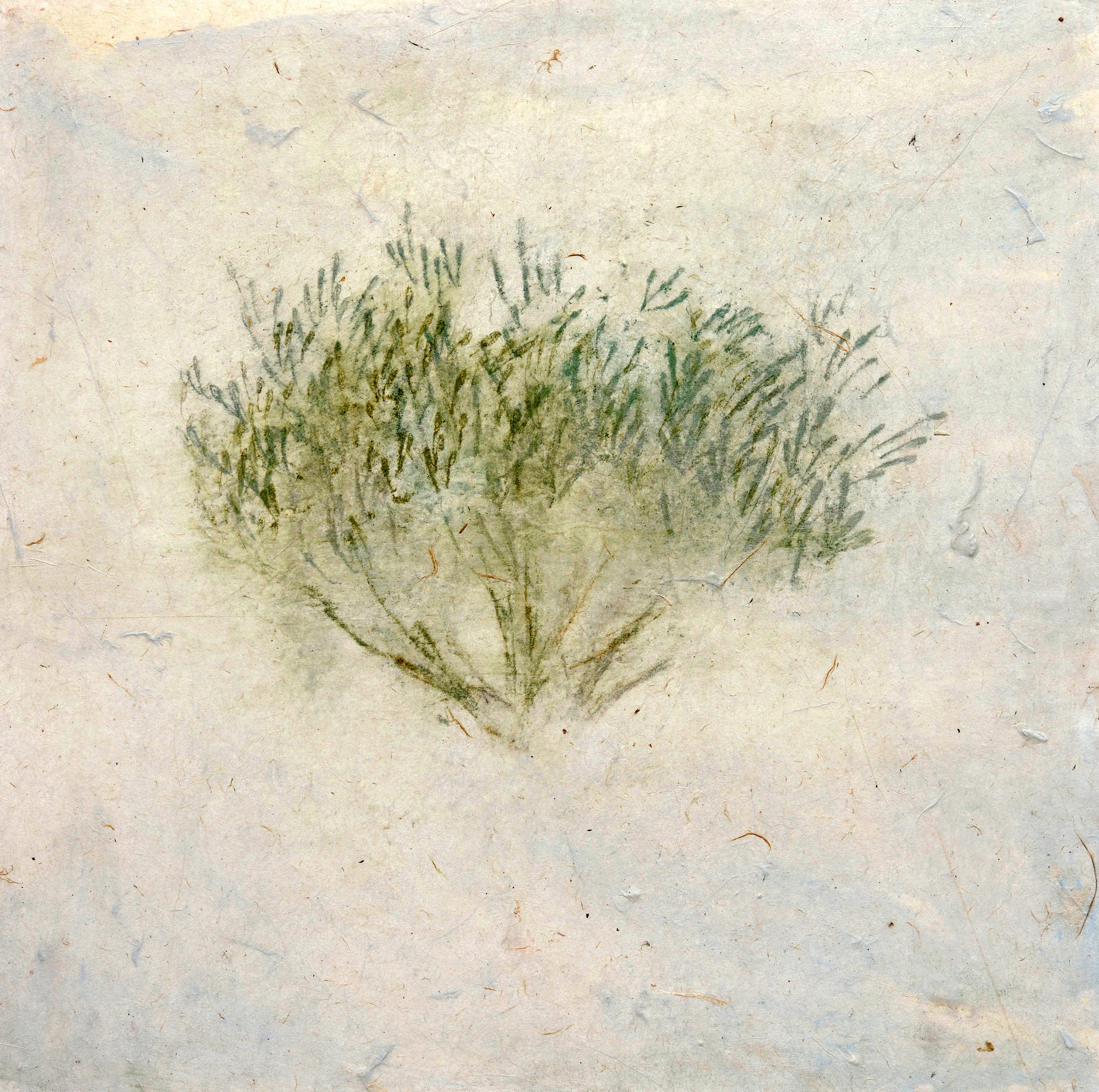 028_Olive Tree (panel) 12 2.jpg
