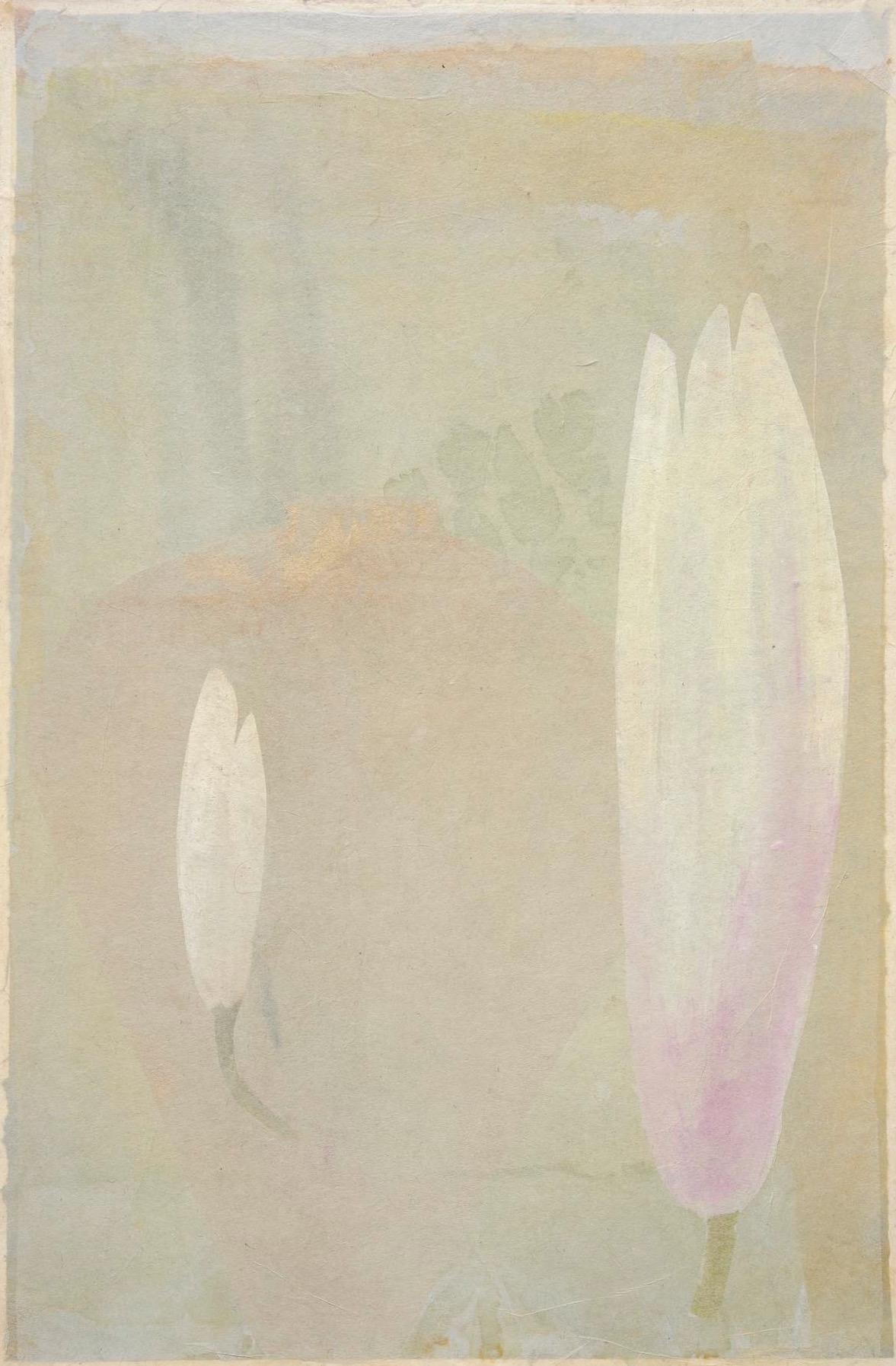 23_Magnolia - white flame_38x25cm.jpg