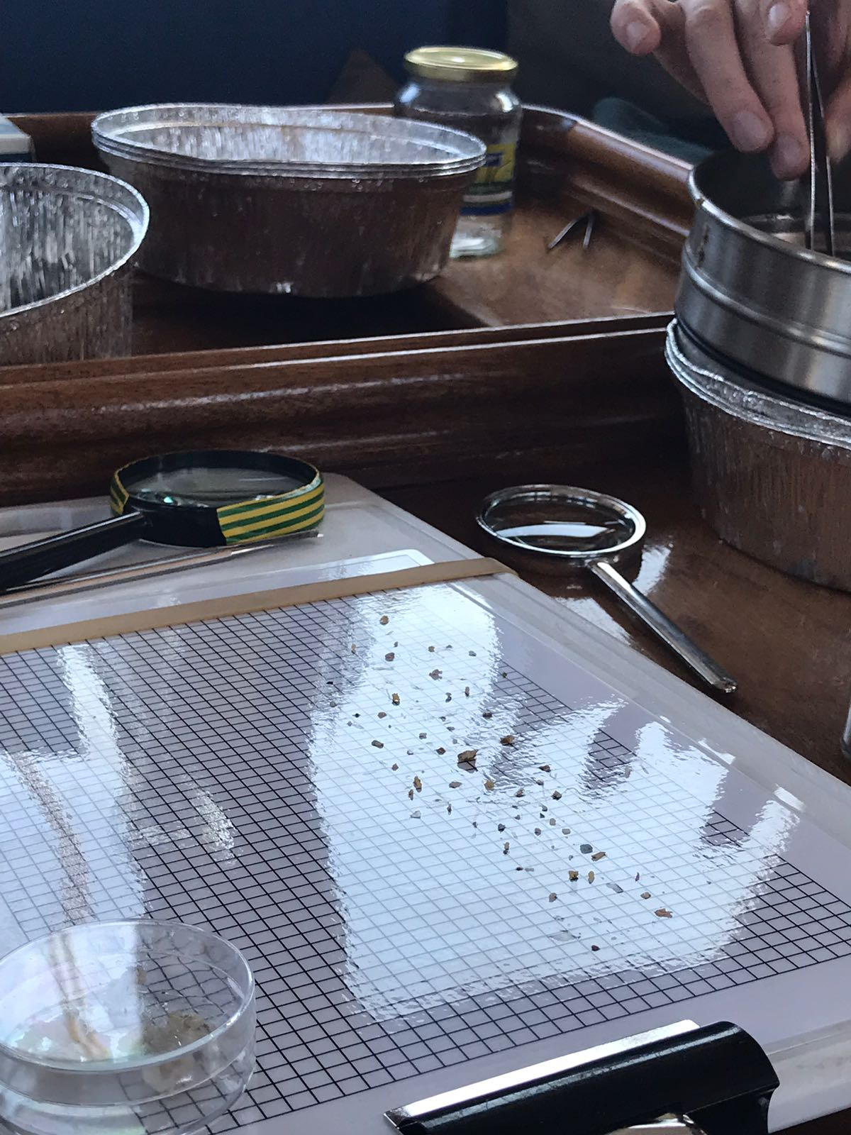 Inspecting the microplastic damage