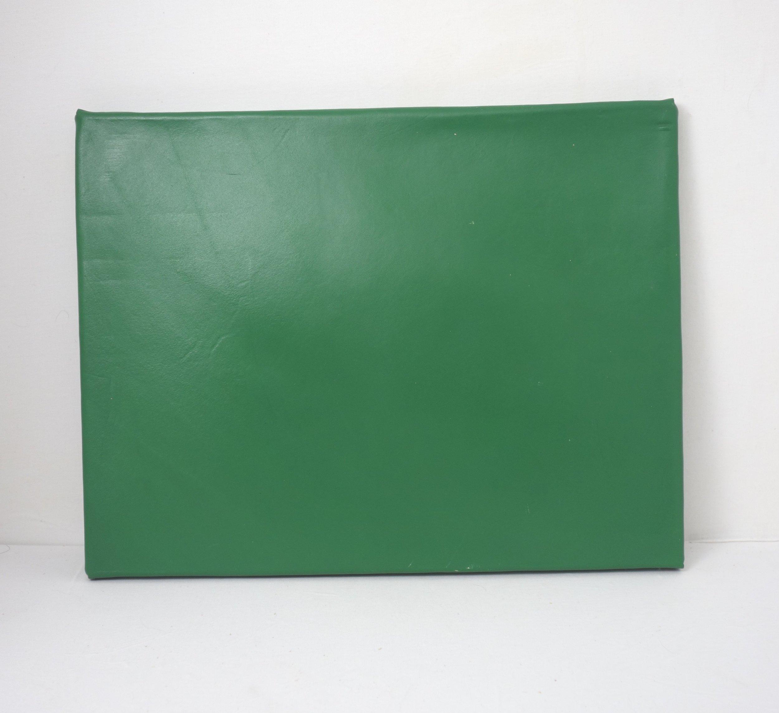T&C Mouse-green-folder-back.jpg