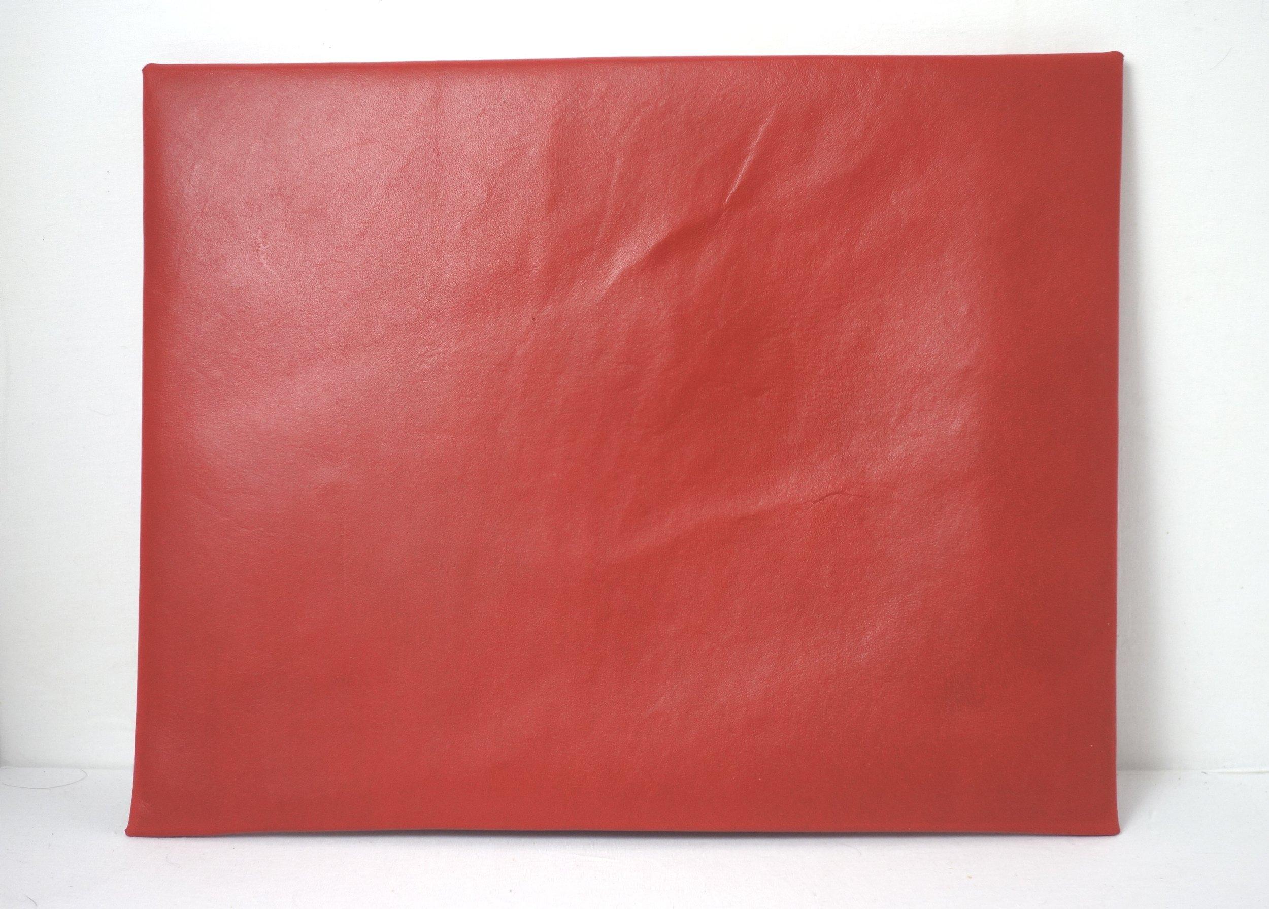 T&C Mouse-red-folder-back.jpg
