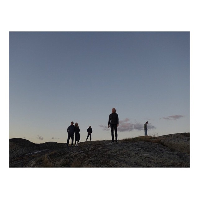 The Norsk Bakers out for an early morning walk on the mountains in Norway, overlooking the Oslo Fjord.. . . . . . #norway #norway_photolovers #oslofjord #oslofjorden #morninglight