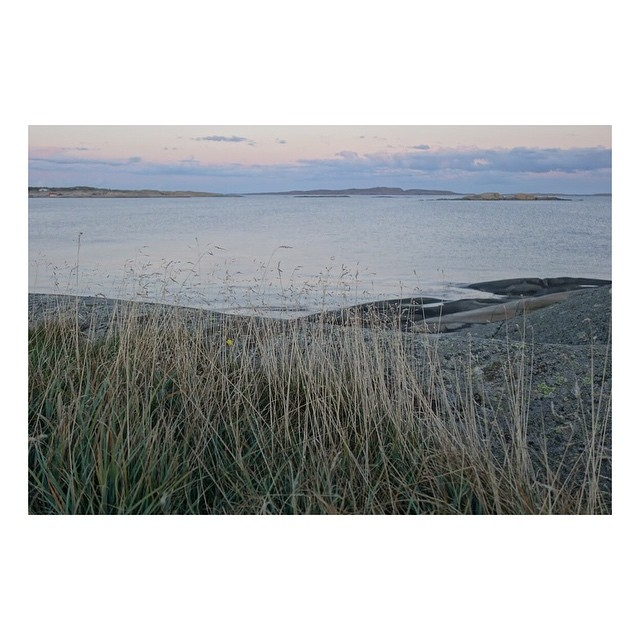 The southern-most point on the island of Hvasser overlooking the Oslo Fjord. Best place for mindfulness and just getting away from it all. . . . . . #norway #oslofjorden #hvasser #morninglight #ilovenorway #mindfulness