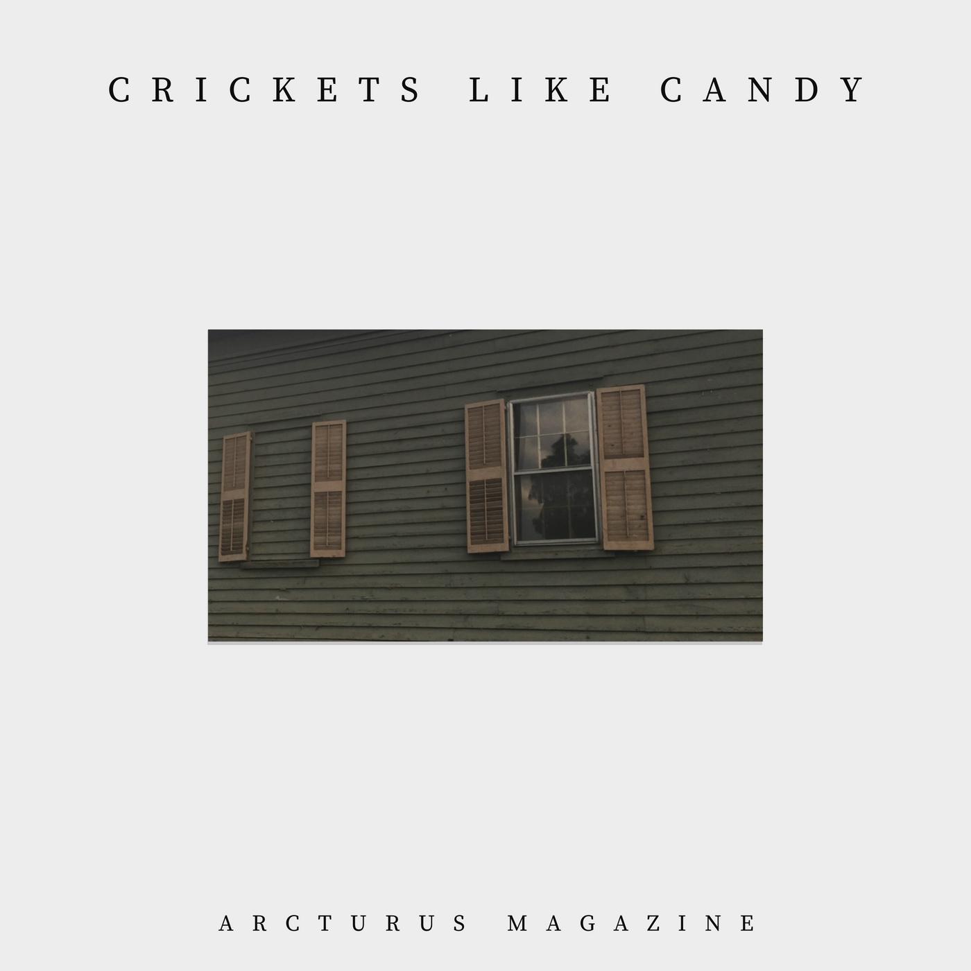 Crickets Like Candy