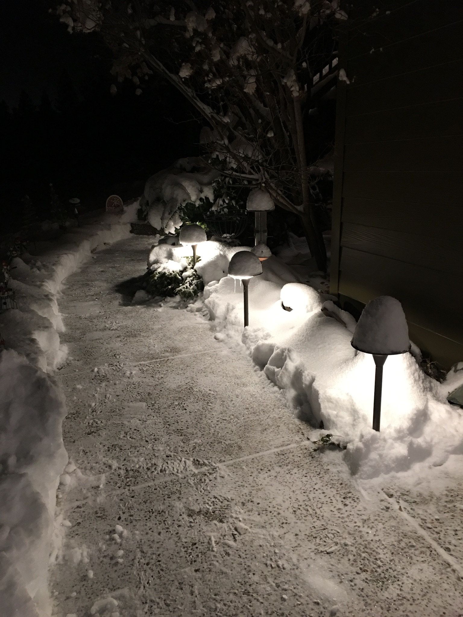 33401649136-defying-the-elements-with-coastal-source-path-lights.jpg