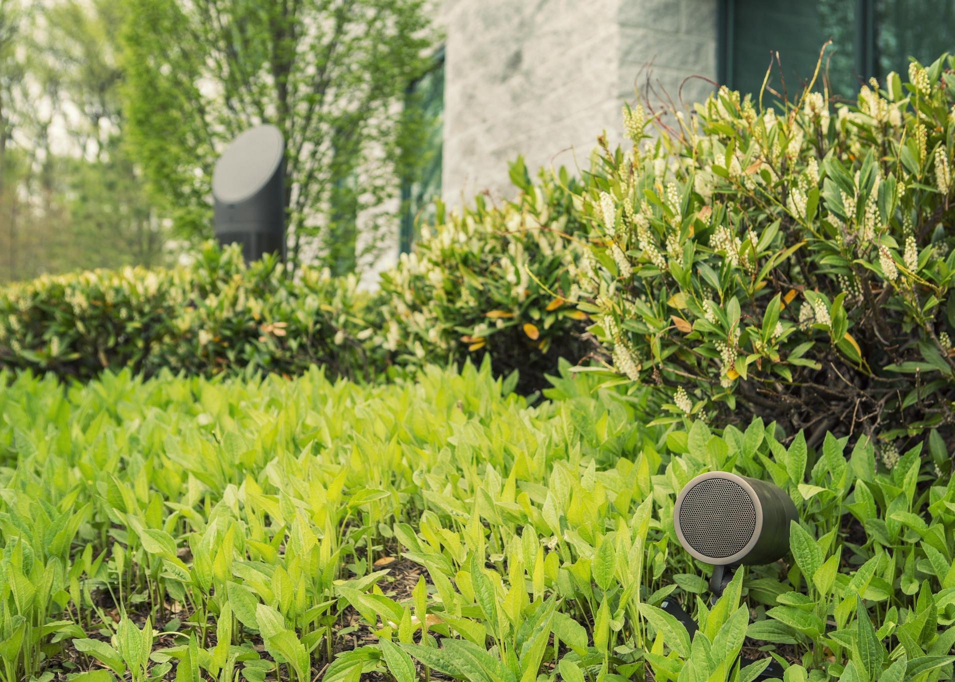 26572097552-modulus-bullet-speaker-with-passive-radiator.jpg